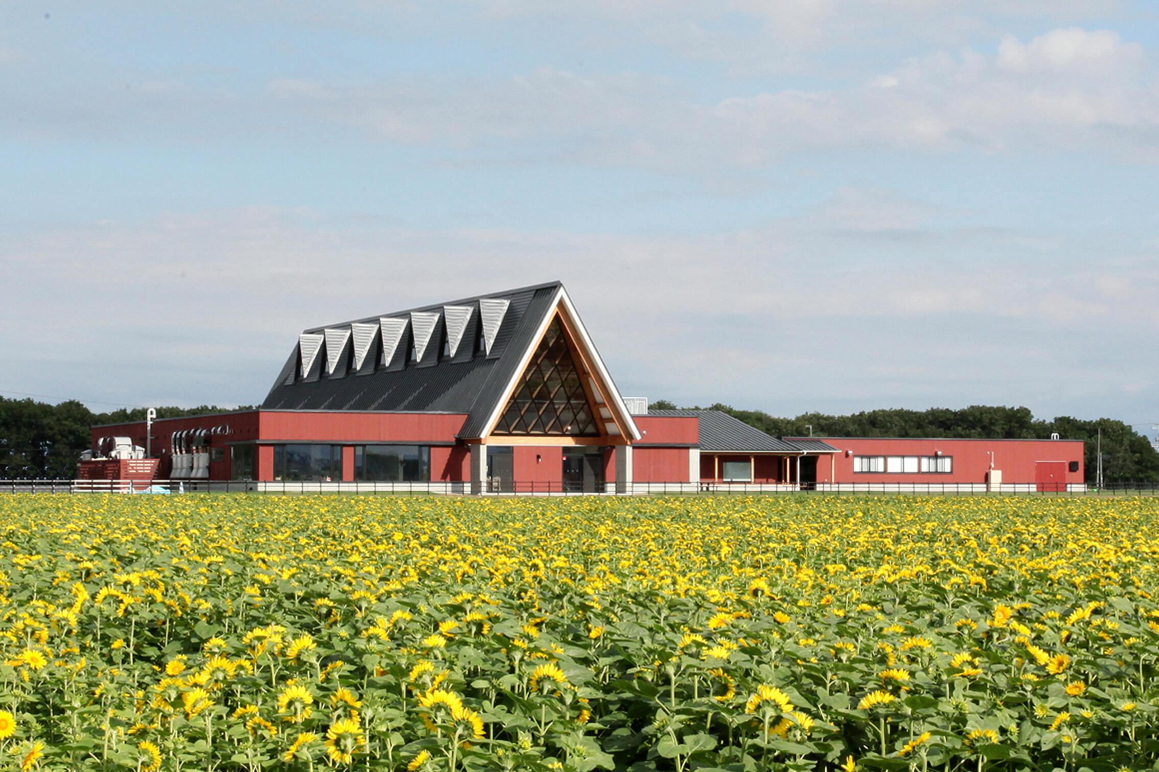 木造建築の施工事例:北欧の風 道の駅とうべつ 4枚目