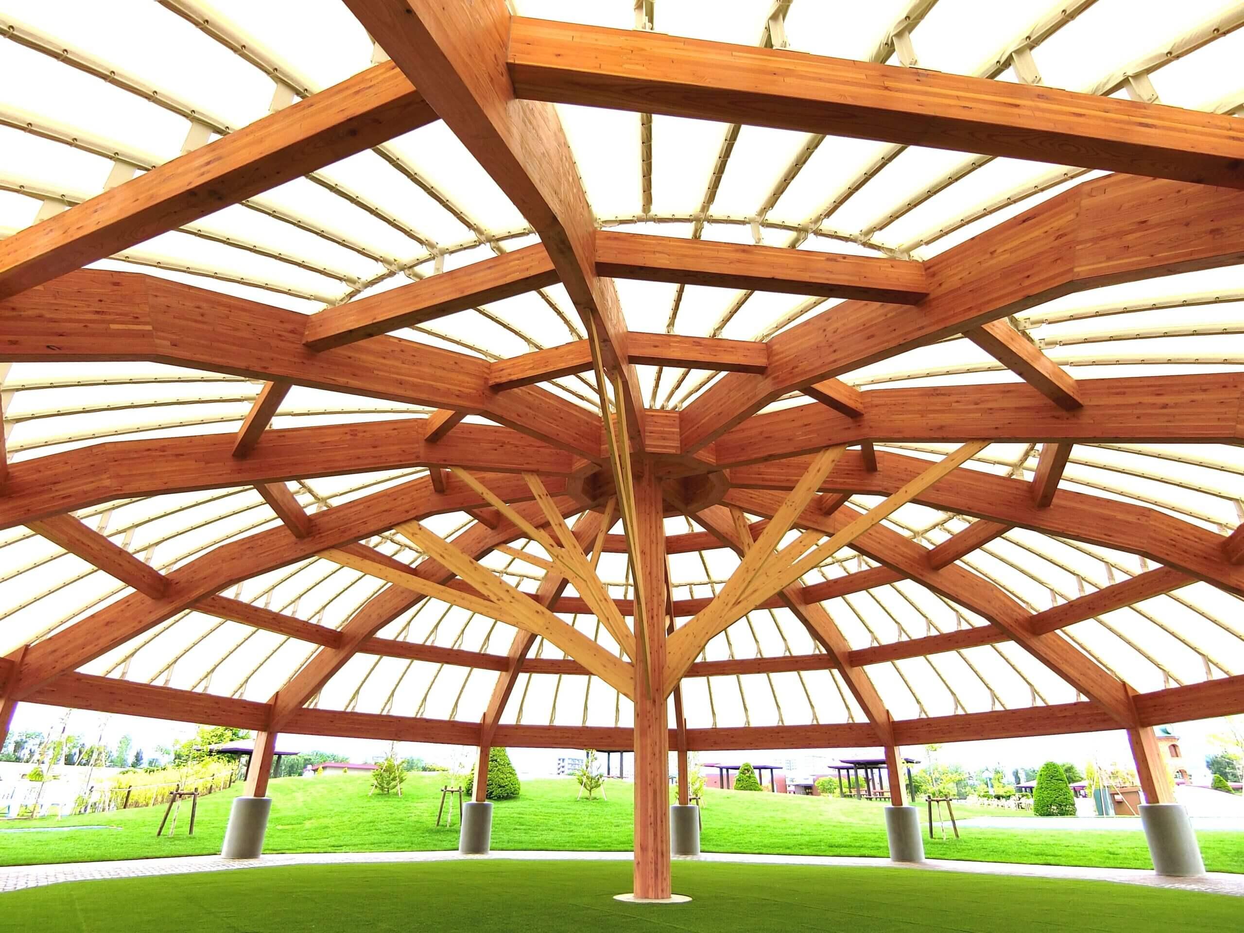 木造建築の施工事例:JRA札幌競馬場 附属施設(はるにれドーム) 1枚目