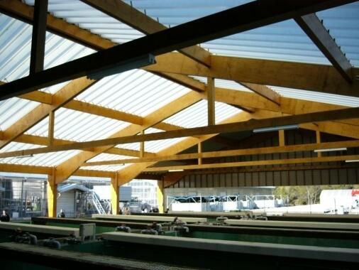 木造建築の施工事例:栽培漁業センター宮古事業場屋外飼育場 2枚目
