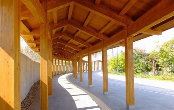 木造建築の施工事例:島根県立水族館「アクアス」渡り廊下 2枚目